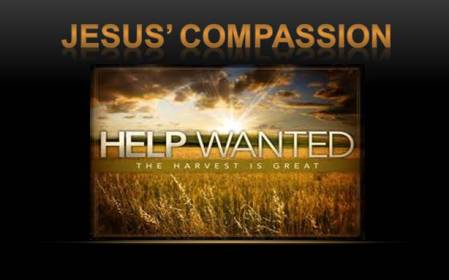 jesus' compassion