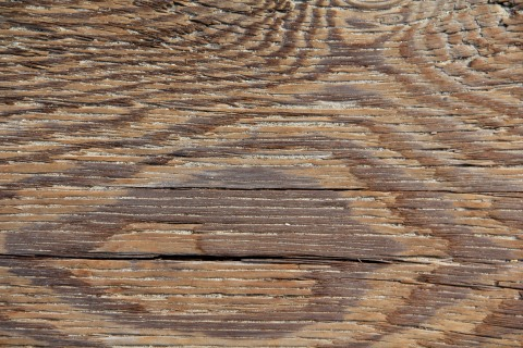 wood plank courtesy of texturex.com