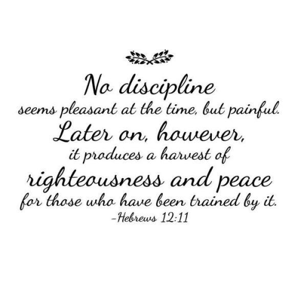 God's Discipline 2